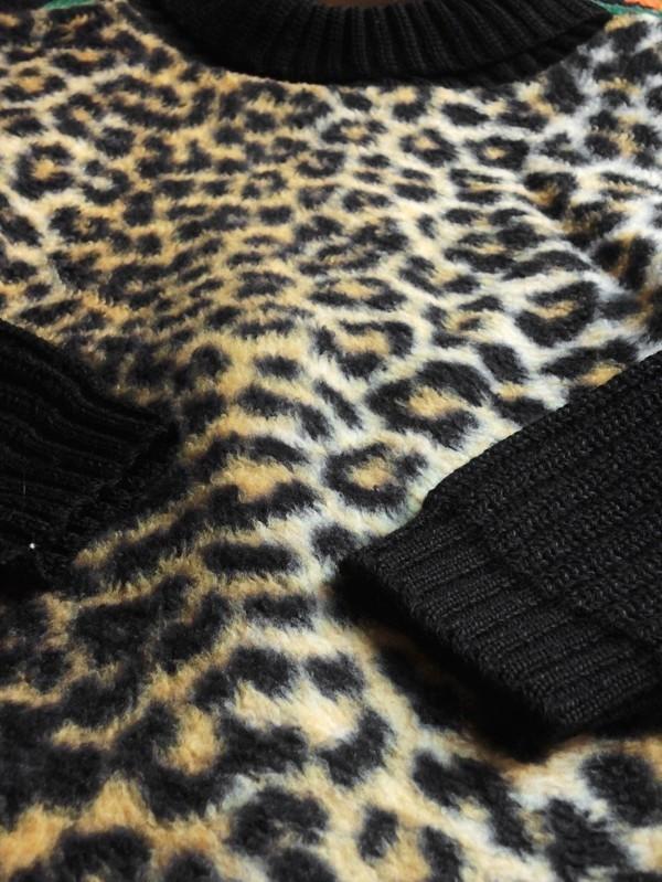 leopard04.JPG