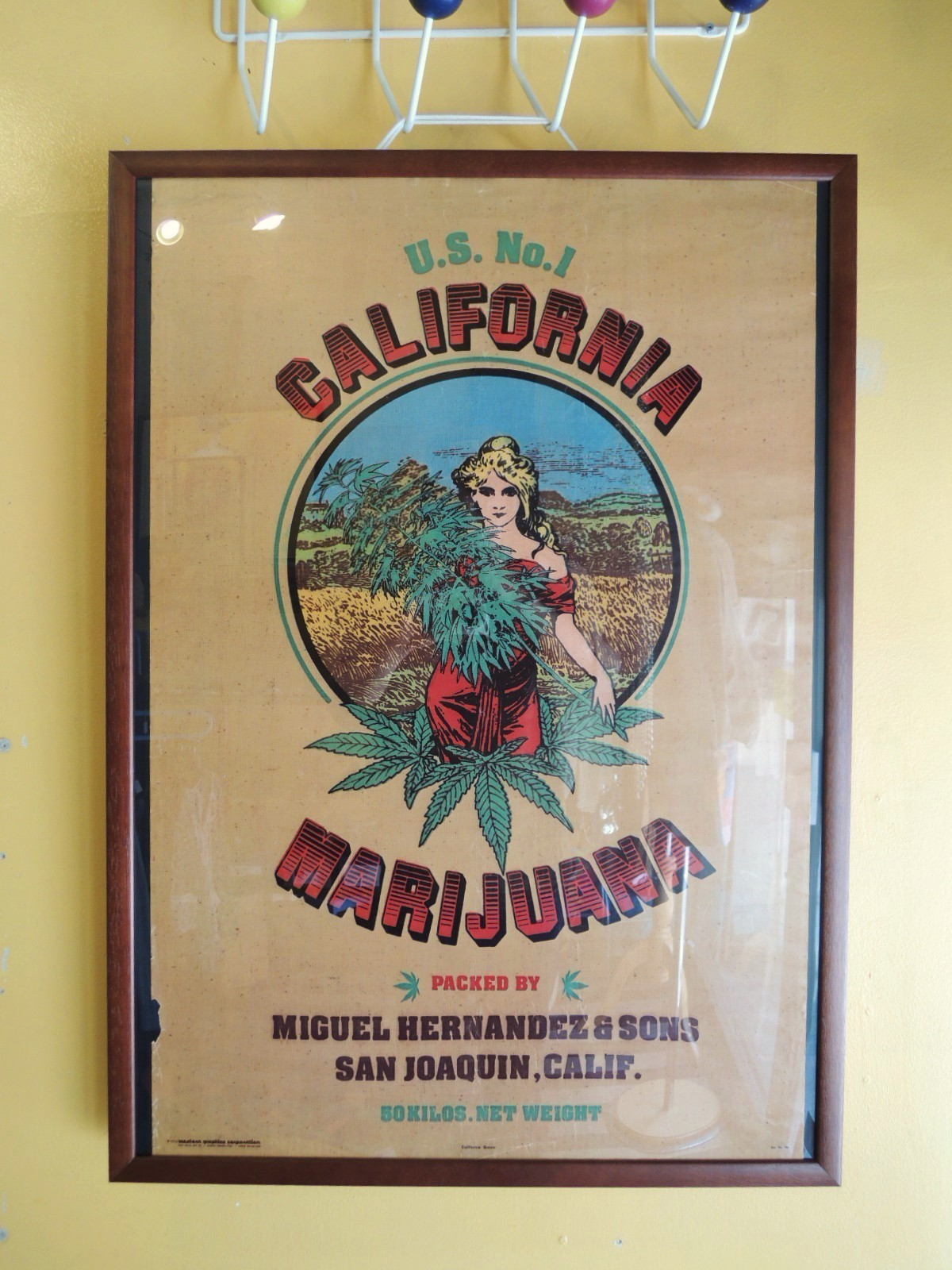 californiamarijuana01.JPG