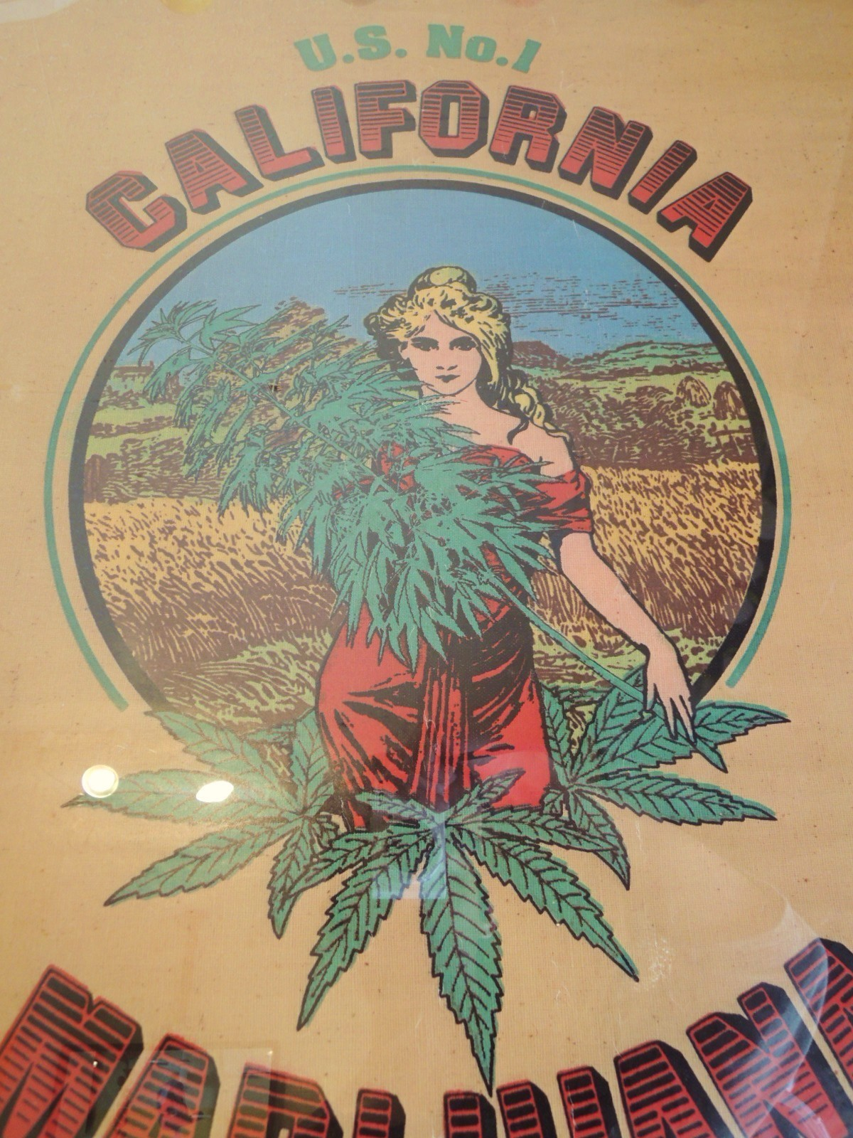 californiamarijuana03.JPG