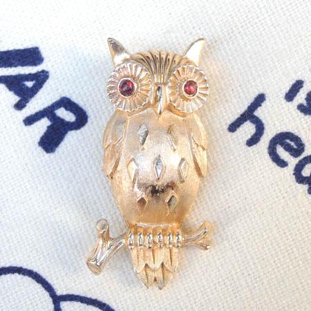 owlbroach01.JPG